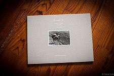"""Couverture du livre """"Accepte-le, Un Album portugais 1919-1979"""" de Céline Gaille"""