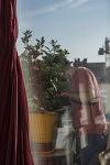 Jardinage sur le balcon, 16 avril 2020.