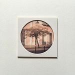 """""""L'Arbre rose"""", pièce unique 10 x 10 cm, signée au dos, faite à la main par la photographe. Image choisie, découpée, recadrée, insérée derrière le hublot protecteur, comme une loupe sur la miniature, fixée au papier canson, avec un espace de méditation neutre autour du cercle de l'image, le tout sur un support carton plume d'un centimètre d'épaisseur. Le motif circulaire est aussi un hommage à l'écrivain poète portugais Fernando Pessoa qui portait des lunettes cerclées."""