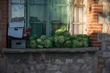 Cabbages, outside the building of the squat in Marseille, former french army quarter. Provisions de choux, Squat à Marseille, ancienne carserne de L'armée française.