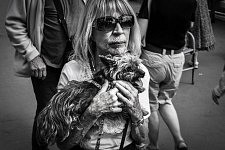 Old lady holding tight on her chest her little dog, Croisette, Cannes, May 2017. Dame âgée serrant son petit chien contre sa poitrine, Cannes, Mai 2017.