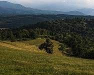 Paysage vue de la ferme du Cap de la Goutte, Juillet 2019