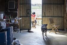 On this spring sunny day, Dalanda and Benoit are having a coffee outside the shed before going to the beehives nearby. En ce jour de printemps ensoleillé, Dalanda et Benoit prennent un café avant d'aller aux ruches non loin de là.
