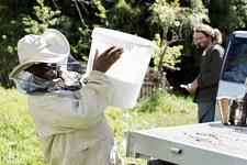 Dalanda laughing at a joke of Benoit in the beehives field. Dalanda rit à une plaisanterie de Benoît dans le pré aux ruches.