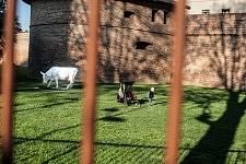 View of a baby and a cow sculpture through the fence of a parc in Toulouse, April 2017. Vue d'un bébé et d'une sculpture de vache entre les grilles d'un parc à Toulouse, Avril 2017.